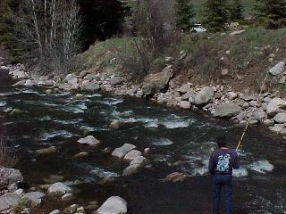 Gore creek for Fly fishing vail colorado